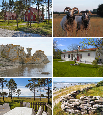 Book a Gotland farmer cottage